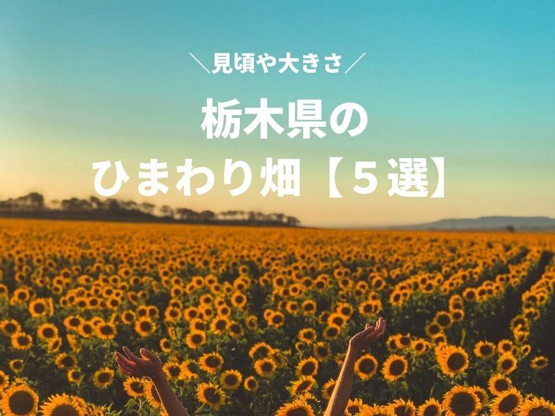 栃木県のひまわり畑5選