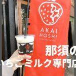 那須のいちごミルク専門店AKAIHOSHI